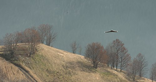 Parrot Disco FPV Drohne im Set mit Skycontroller und FPV-Brille - 9