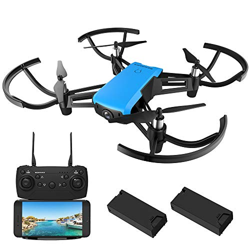REDPAWZ Micro FPV Racing Drone Set